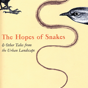 The Hopes of Snakes